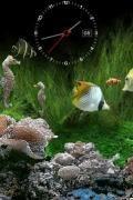 EGi Marine Aquarium v.2.2