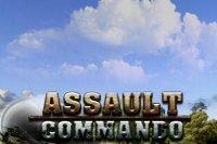 Скриншот к файлу: Assault commando (Штурмовой коммандос)