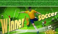 Скриншот к файлу: Winner's soccer 2014 Evolution elite (Футбольный победитель 2014 Эволюция элиты)